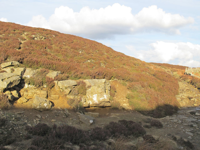 Small rock outcrop at Backstone Cleugh