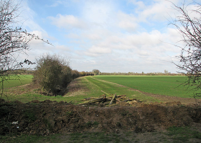 From Mere Way towards Impington