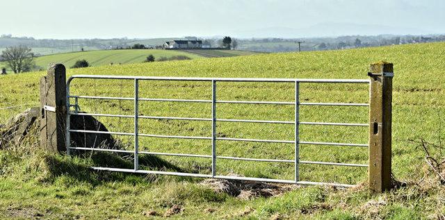 Field gate, Ballyalton, Newtownards/Comber (March 2017)