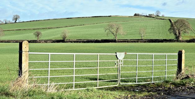 Field gates, Ballyrainey, Dundonald/Comber (March 2017)