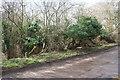 SP9028 : Boundary stone at hedge junction beside Bragenham Lane by Roger Templeman
