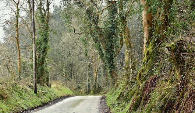 Creighton's Green Road, Ballymenagh, Holywood - March 2017(1)