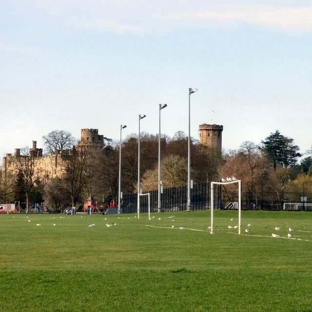 Gulls on the goalposts