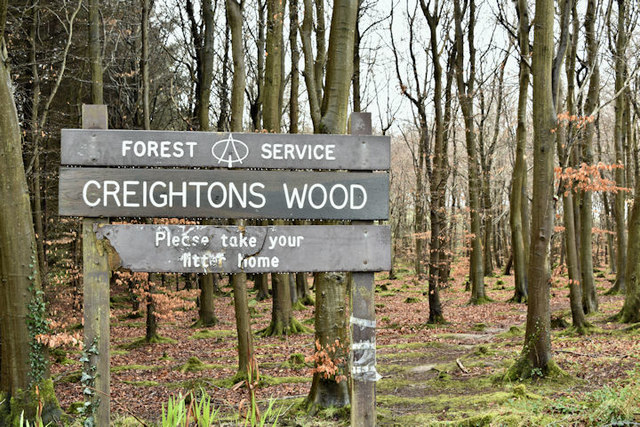 Creighton's Wood, Ballymenagh, Holywood (March 2017)