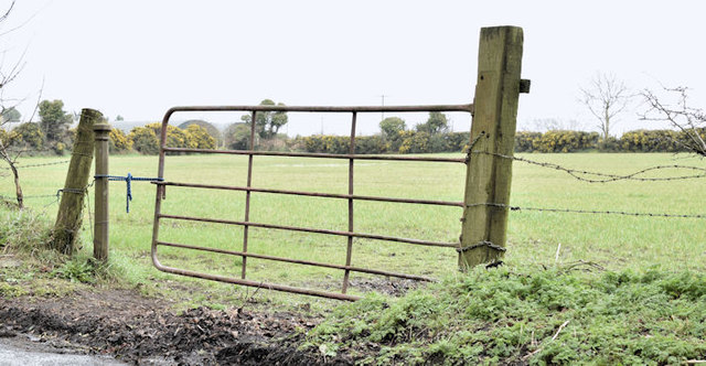 Field gate, Ballymenagh, Holywood (March 2017)