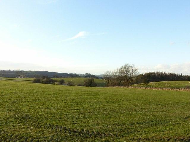 View towards Caldon Low