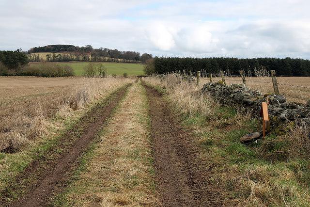 A field track at Darlingfield