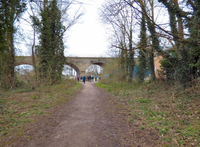 Approaching Milverton Viaduct