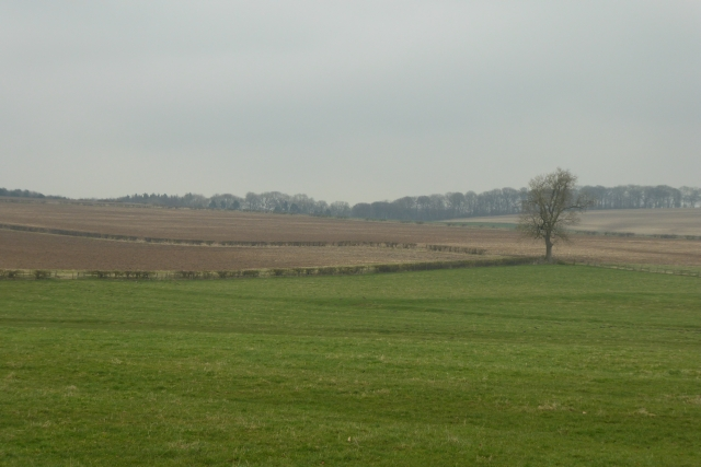 Farmland outside Duggleby