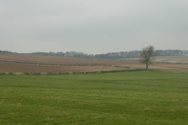 Farmland outside Duggleby