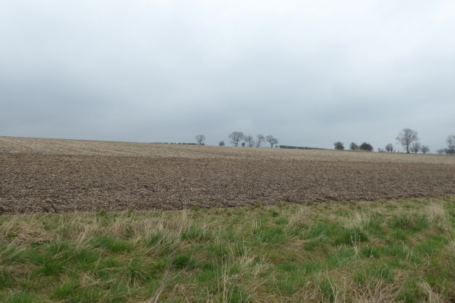Fields in Mowthorpe Wold
