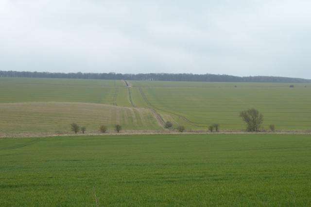 Farmland south of Low Road