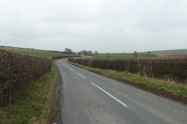 Along Low Road