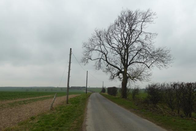 Minor road near Malton Lane