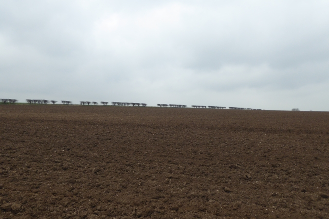 Ploughed farmland off Wold Road