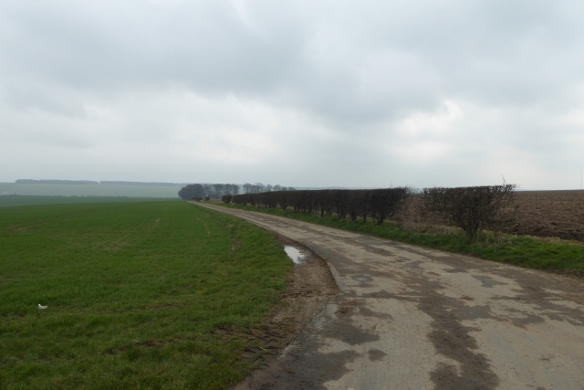 Bridleway to Kirby Wold Farm