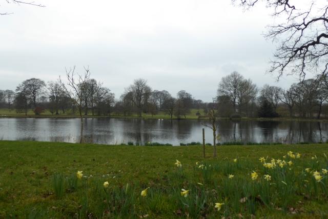 Pool near Settrington House