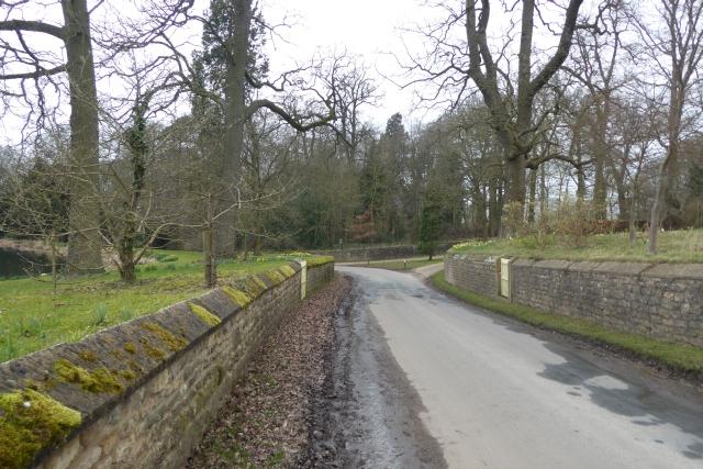 Horse Course Lane