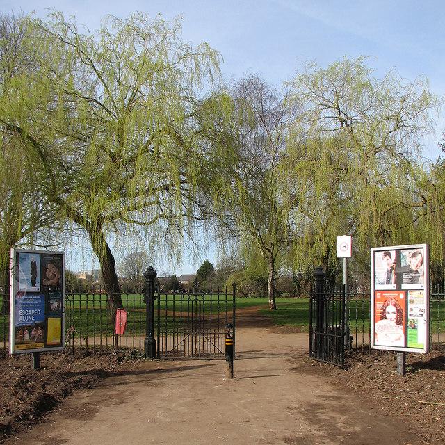 Coleridge Rec gate and fresh green leaves