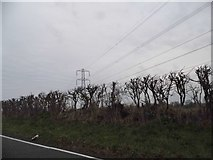 TL0232 : Power lines in Wood End by David Howard