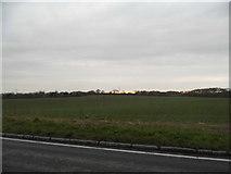 TL0628 : Field by Sundon Road, Streatley by David Howard