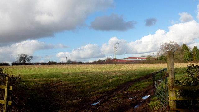 Pasture land opposite The Cottage Inn
