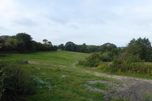 Track off Cockleton Lane