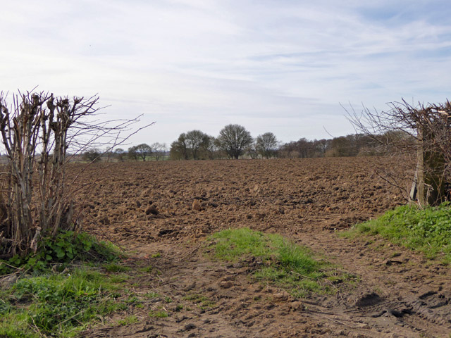 Ploughed field south of Bower Road
