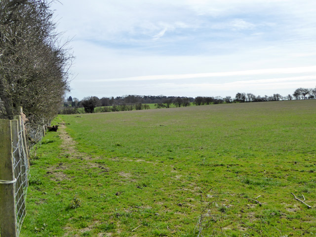 Empty field east of Harringe Lane