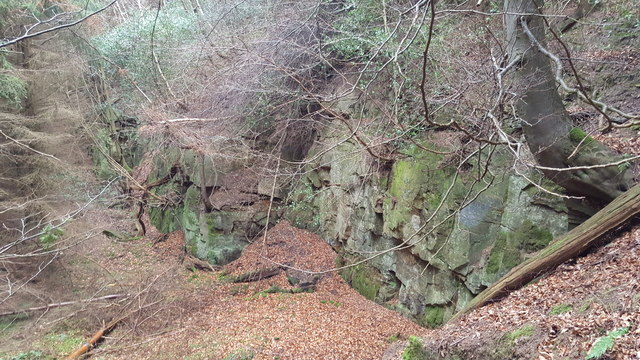 Old quarry in Snokoehill Plantation