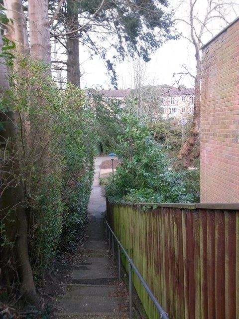 Westbourne: view across the Gardens from footpath A02