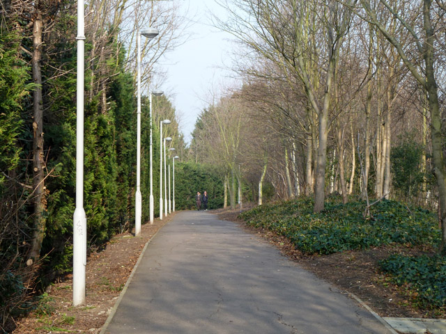 Path towards Rochester Way