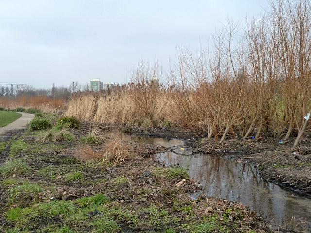 Quaggy River, Sutcliffe Park