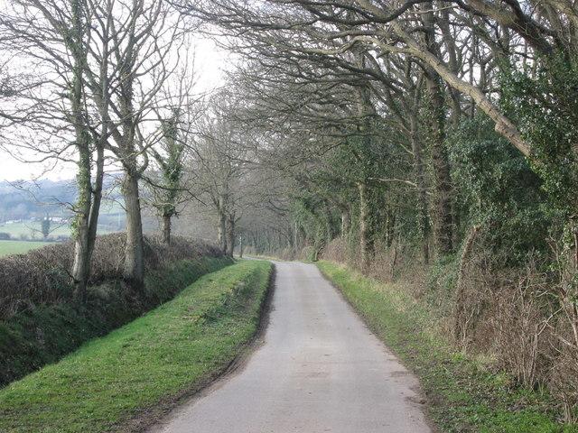 Old Park Lane
