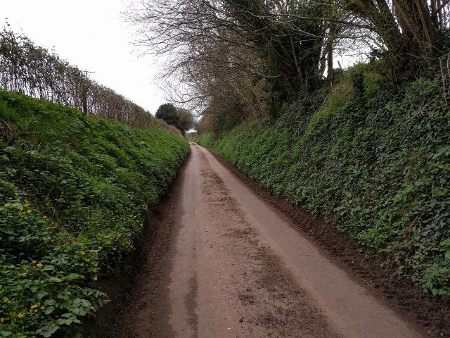Heading up the hill near Burnthouse Farm