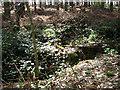TM0188 : Overgrown blast shelter by Evelyn Simak