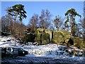 TQ5535 : Snowy car park at Eridge Rocks by Patrick Roper