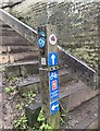 SJ7065 : Signpost beside Shropshire Union Canal Middlewich branch by Jonathan Hutchins