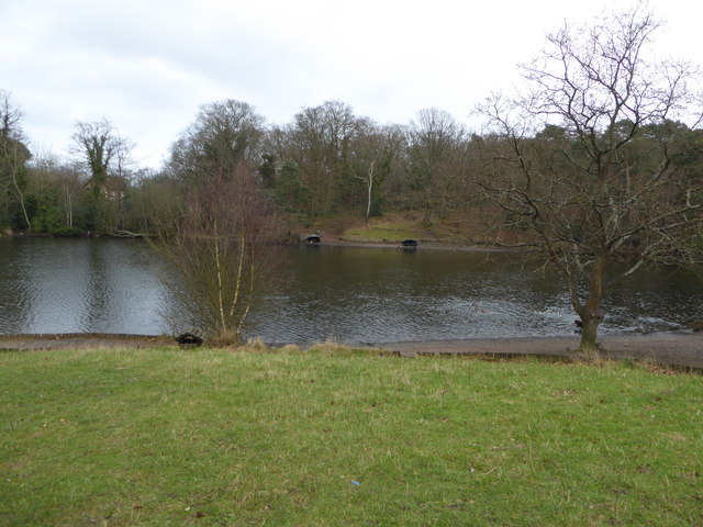 Upper pond on Keston Common