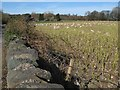 SH5970 : Field by Bangor Rugby Club by Jonathan Wilkins