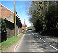TG2138 : To Felbrigg on Cromer Road (B1436) by Evelyn Simak