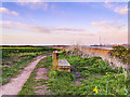 SJ4881 : Bench on the Coastal Path near Hale by David Dixon