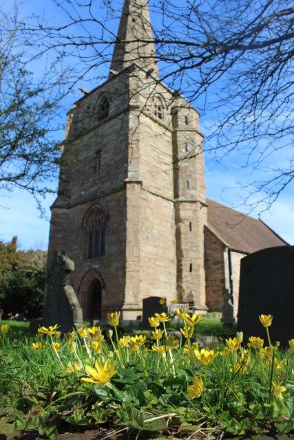Spring flowers in Linton churchyard