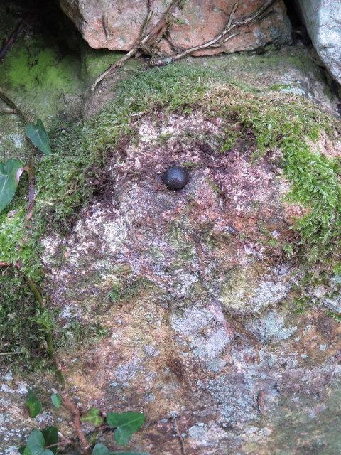 Rivet bench mark on Mynydd Tir y Cwmwd, Llanbedrog