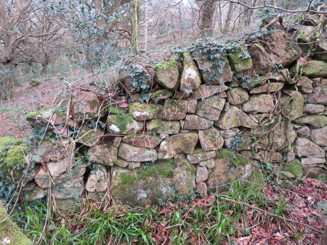 Old stone wall on Mynydd Tir y Cwmwd, and a rivet bench mark