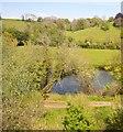 ST6965 : River Avon through trees by N Chadwick