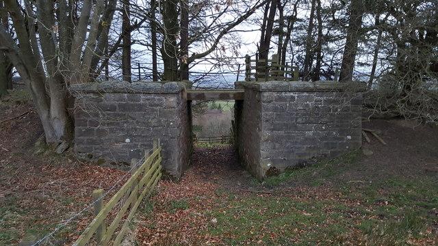 Old railway bridge on former Allendale Branch line
