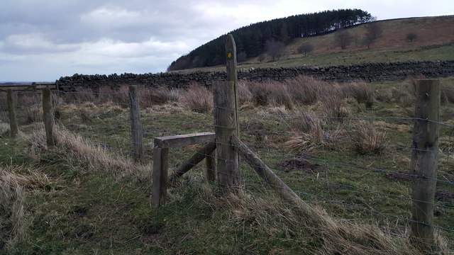 Stile on footpath between Humbleton and Langley Castle