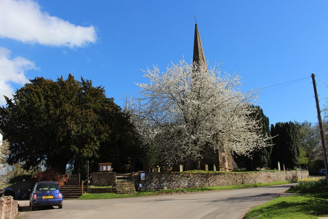 Cherry tree in blossom in Linton churchyard