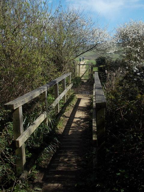Seatown: footbridge on the diverted coast path